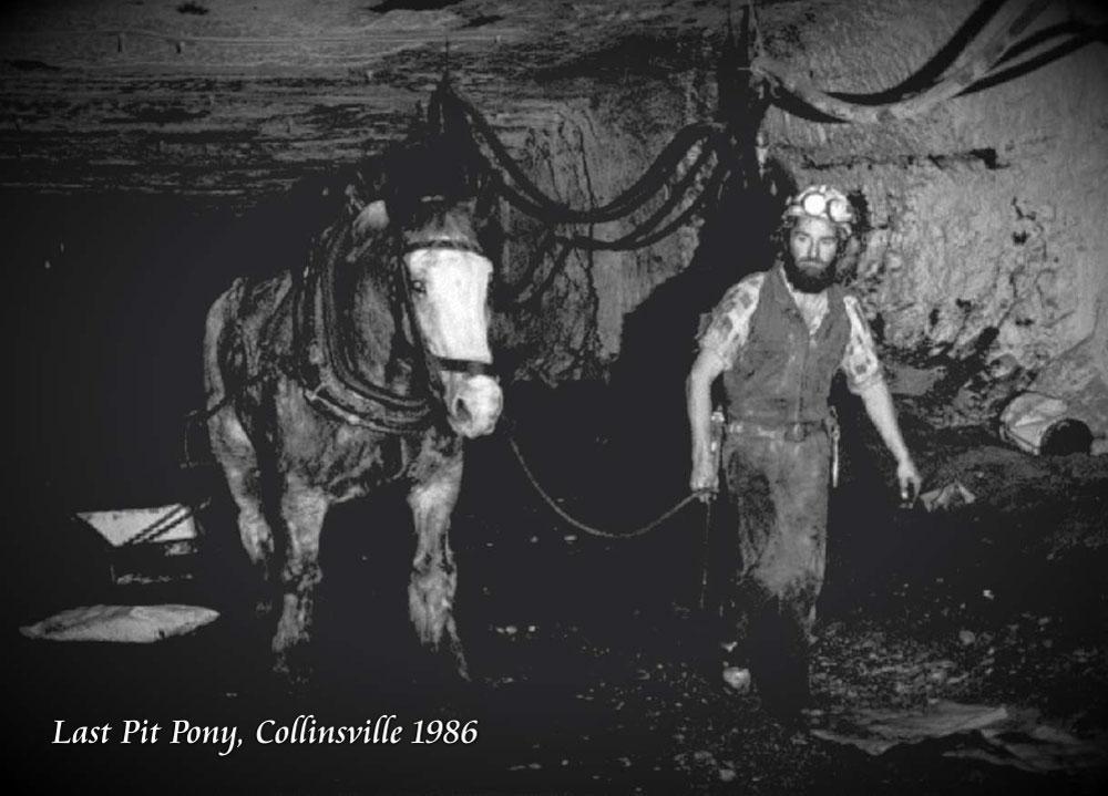 Past-pit-ponies-002